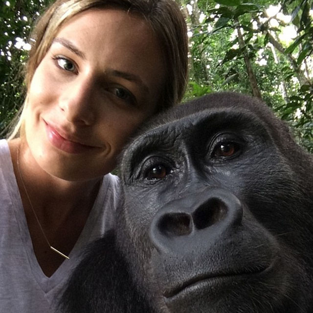 tamsy_aspinall gorilla reunion