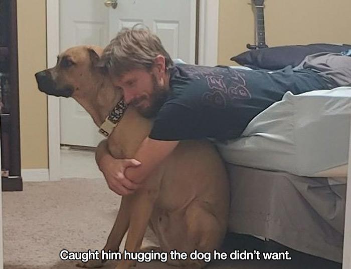 didn't want a pet